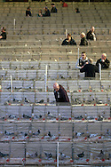 Visitors to the  annual Royal Pigeon Racing Association Show of the Year at the Winter Gardens, Blackpool, inspecting individual cages with birds in the main ballroom. The two-day show takes place each year in Blackpool and attracts 4000 entries from pigeon fanciers from all over the world. The two-day event attracted 25,000 competitors and spectators in 2012.