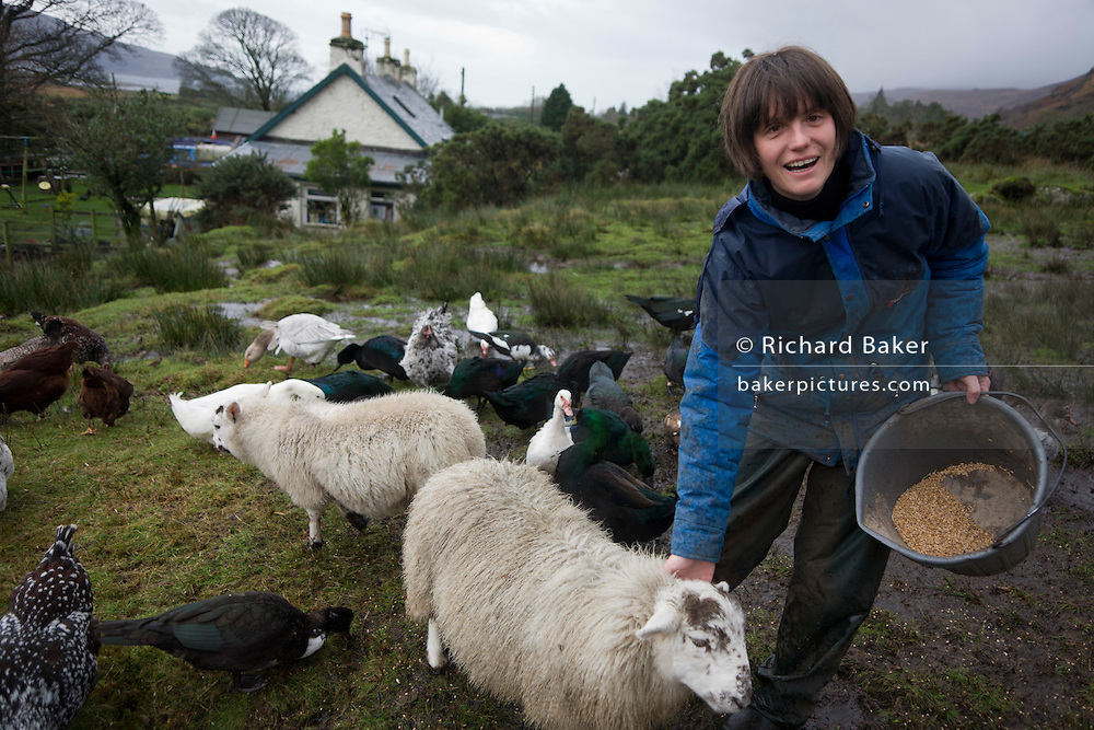 "Sarah Leggitt feeds her livestock on her land and near the estate cottage, a former Smithy with livestock at Lochbuie, Isle of Mull, Scotland. She and her husband moved from southern England 6 years ago to work for the Lochbuie Estate and the old Smithy is provided to them as living accommodation. Lochbuie is a settlement on the island of Mull in Scotland about 22 kilometres (14 mi) west of Craignure. The name is from the Scottish Gaelic Locha Buidhe, meaning ""yellow loch"". http://lochbuie.com/Lochbuie"