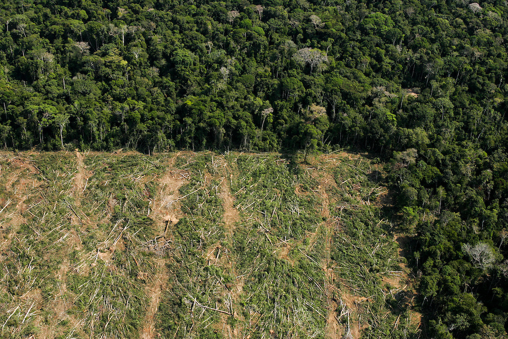 Deforested land for soy plantations near Sinop, Mato Grosso State, Brazil.