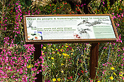 Interpretive display at the Arizona-Sonora Desert Museum, Tucson, Arizona USA