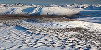 Horft í austur yfir Tröllhálsgil og Bláskógarheiði. Í baksýn eru Lágafell og Sandkluftir.