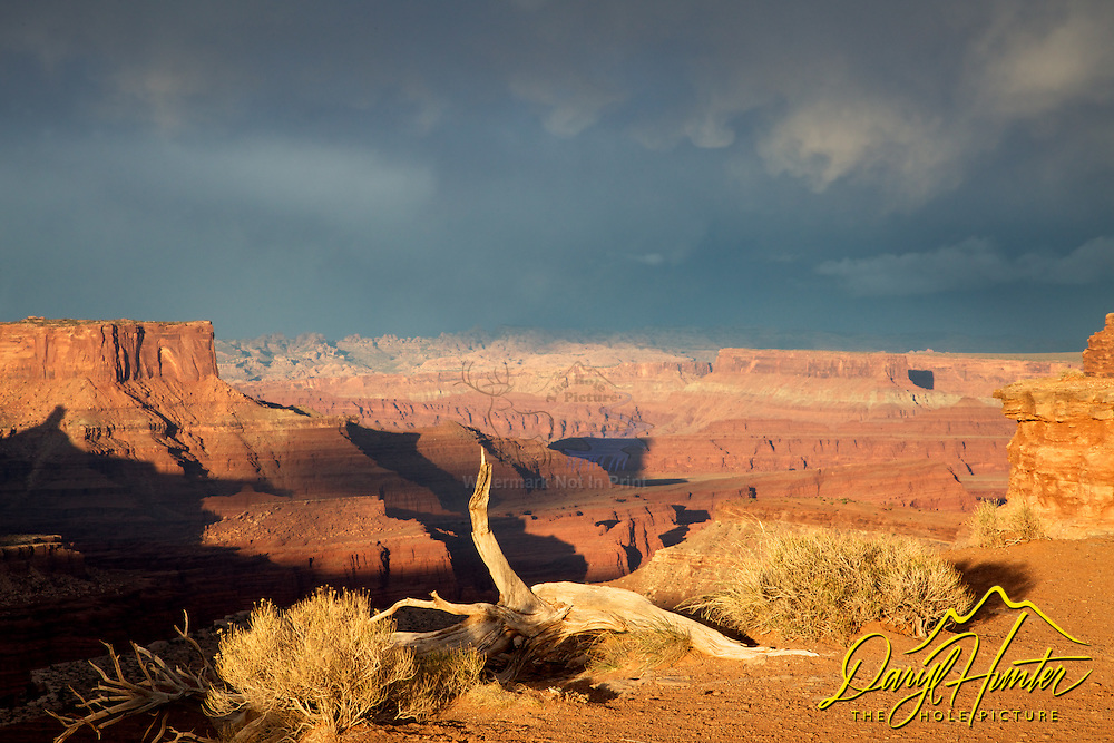Evening Thunderstorm, Canyonlands National Park, Moab, Utah