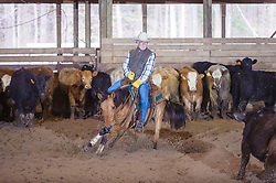 April 30 2017 - Minshall Farm Cutting 2, held at Minshall Farms, Hillsburgh Ontario. The event was put on by the Ontario Cutting Horse Association. Riding in the 25,000 Novice Horse Non-Pro Class is Don Vincent on Lil Hypnotic owned by the rider.