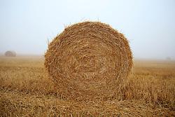 CZECH REPUBLIC VYSOCINA NEDVEZI 17AUG15 - <br /> <br /> Harvested field of wheat and bales of straw in the morning mist near the village of Nedvezi, Vysocina, Czech Republic.<br /> <br /> jre/Photo by Jiri Rezac<br /> <br /> <br /> <br /> © Jiri Rezac 2015
