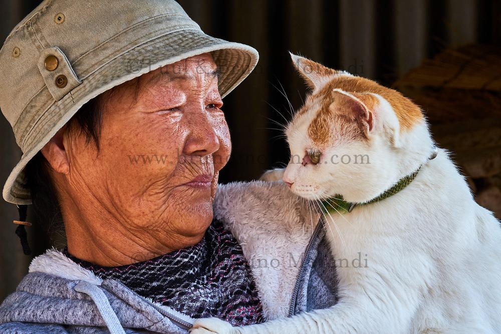 Japon, île de Shikoku, préfecture d'Ehime, île d'Aoshima, l'ile aux chats, Madame Kamimoto San, (la mère des chats )// Japan, Shikoku island, Ehime region, Aoshima island, Cat island, Kamimoto San (the mother of the cats)