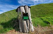 Mailbox set into tree trunk, North Island, New Zealand