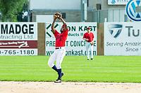 KELOWNA, BC - JULY 06:  Richi Sede #4 of the Kelowna Falcons catches a fly ball against the Walla Walla Sweets at Elks Stadium on July 6, 2019 in Kelowna, Canada. (Photo by Marissa Baecker/Shoot the Breeze)