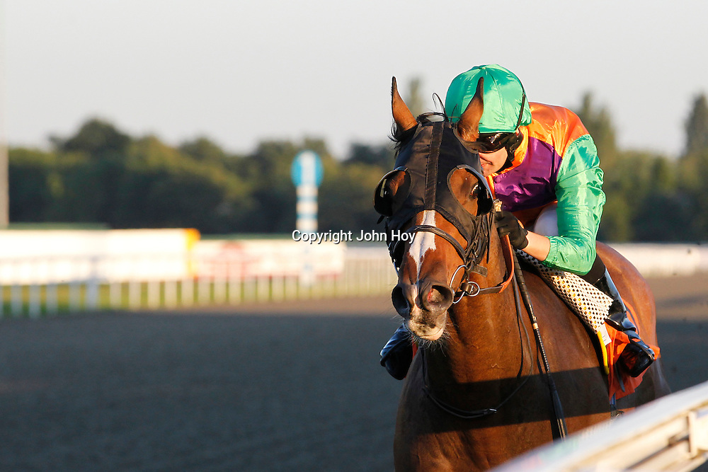 Four Winds and Liam Jones winning the 7.00 race