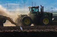 Lurline Ave. Rice Field prep work, Monday, April 23, 2018.<br /> Photo Brian Baer