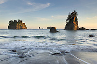 Seastacks, Second Beach, Olympic National Park