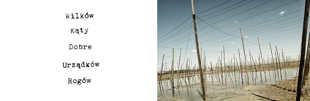 Powodz w Polsce w 2010 roku / Flood in Poland in 2010