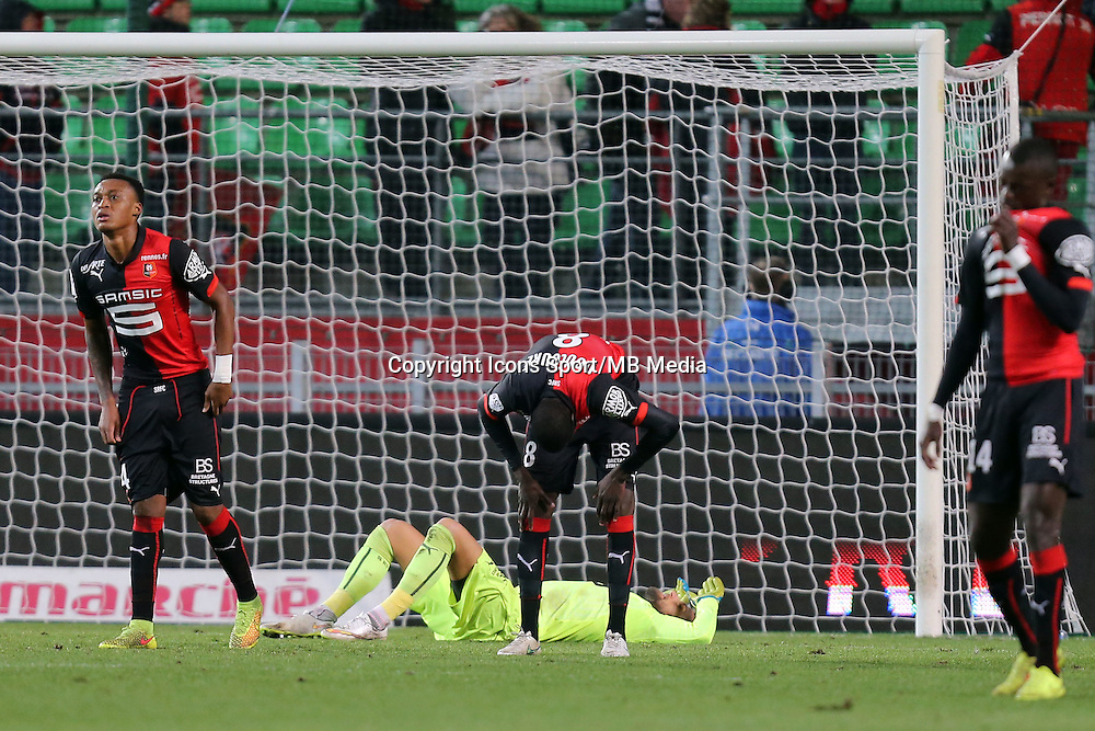 MEXER / Abdoulaye DOUCOURE / Benoti COSTIL   - 25.01.2015 - Rennes / Caen  - 22eme journee de Ligue1<br />