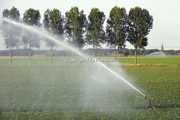 Nederland, Batenburg, 20-6-2017 Boeren laten hun land beregenen door een loonbedrijf, loonwerkersbedrijf, vanwege de langdurige, aanhoudende droogte. Foto: Flip Franssen