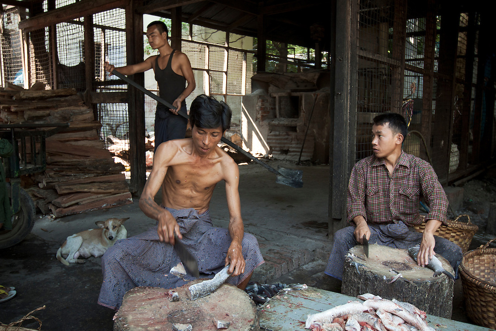 Two men chopping fish for lunch in Mahagandayon monastery near Mandalay in central Myanmar.