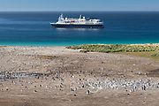 The National Geographic Explorer anchors off the coast of New Island near a Gentoo penguin colony.