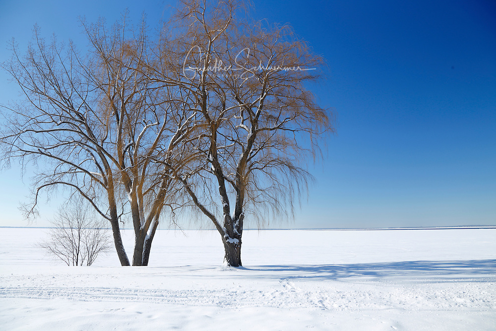 Winter on Saint Bernard Island, Chateauguay, Quebec, Canada