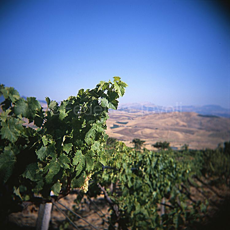 Sicilian land