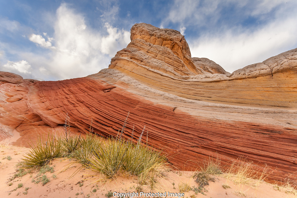 White Pocket, Vermilion Cliffs National Monument, AZ