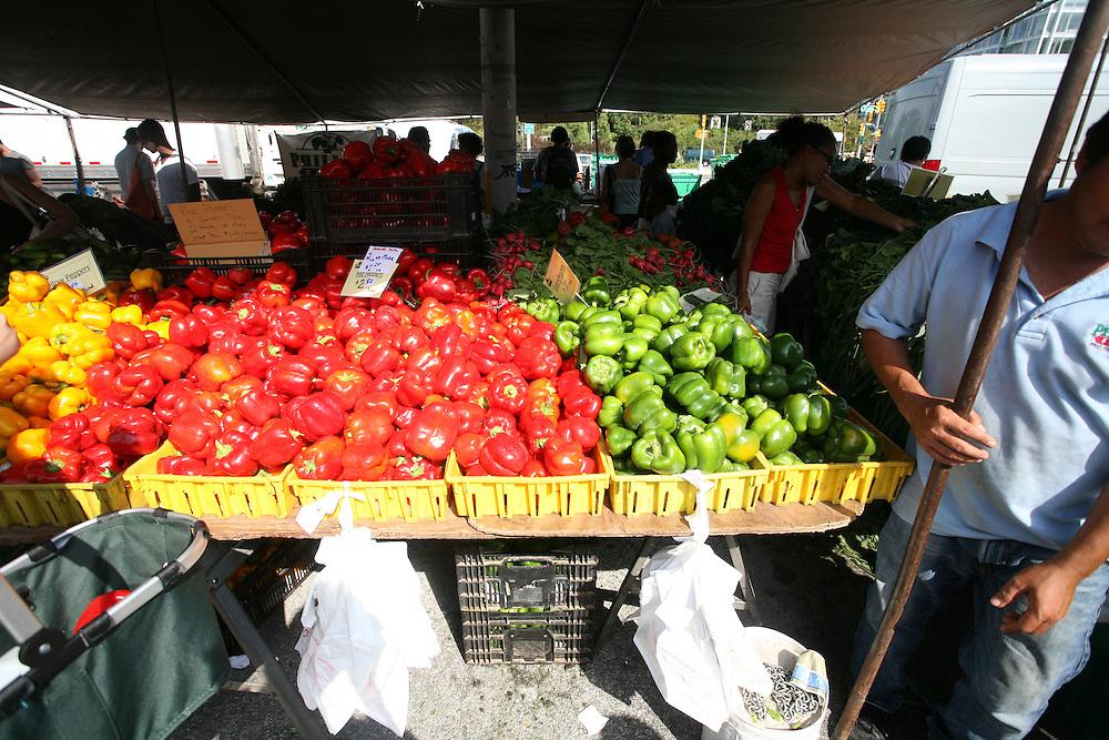 Park Slope Farmers Market in Brooklyn, New York. 2010