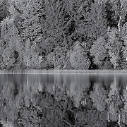 """Brevort Lake in Reflection"" mono<br />