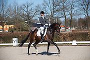 Stephanie Kooijman - Dibert L<br /> Selectie WK Jonge Dressuurpaarden 2013<br /> © DigiShots
