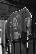 Roma 9 ottobre 1982.Attentato alla Sinagoga di Roma da parte di un commando palestinese.L'attentato avvenne di sabato mattina, alla fine dello Sheminì Atzeret che chiude la festa di Sukkot.L'attentato causò la morte di Stefano Gay Tachè di soli due anni ed il ferimento di 37 persone. Una maglia sporca di sangue appesa sui cancelli della Sinagoga..Rome October 9, 1982.Attack on the synagogue in Rome by a commando palestinese.L 'attack was on a Saturday morning, at the end of Shemini Atzeret, which closes the festival Sukkot.L' attack caused the death of Stefano Gay Tache only two years and the wounding of 37 people. A sweater stained with blood, hung on the railing of the Synagogue  attacked of  commando palestinian