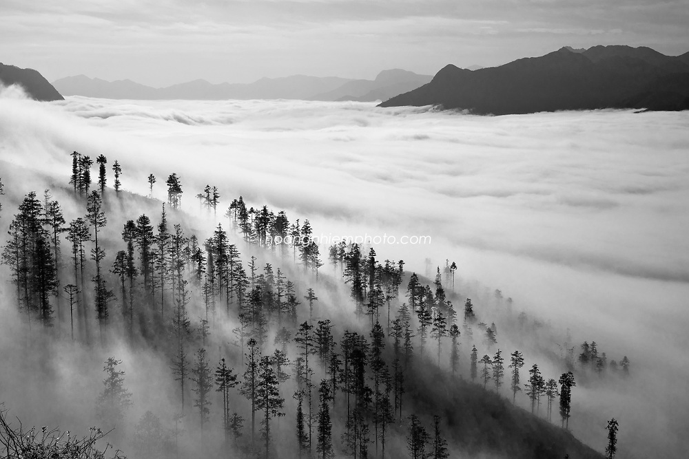 Vietnam Images-landscape-Nature-fine art-sapa Hoàng thế Nhiệm