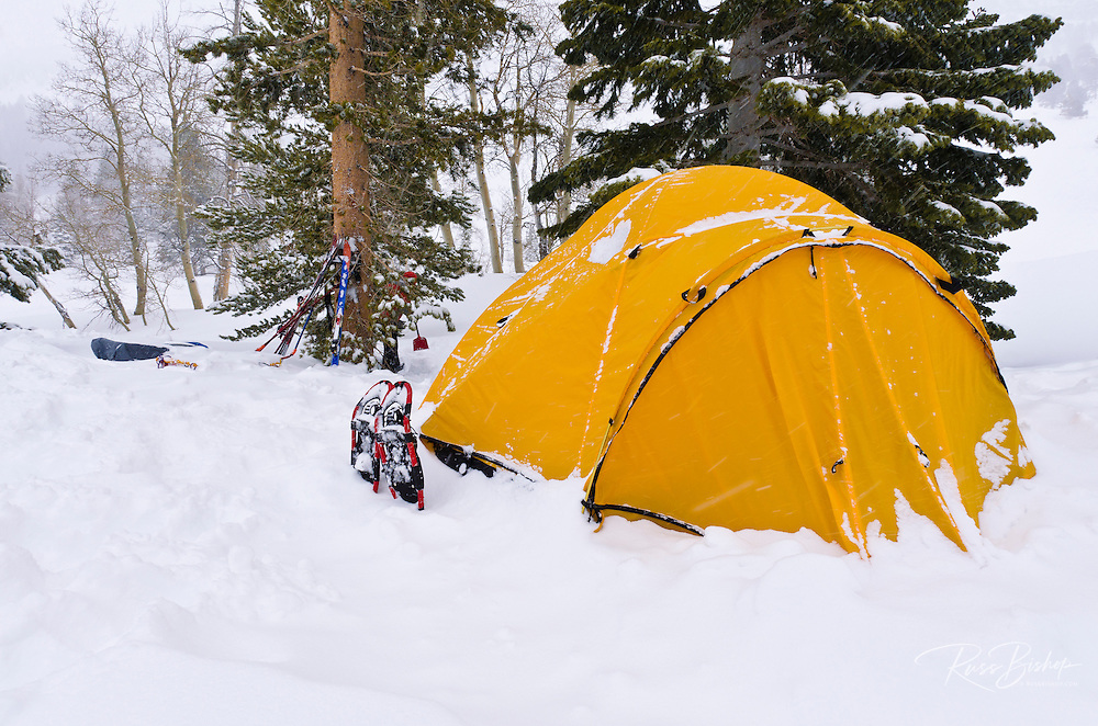 Yellow dome tent and snow shoes, Ansel Adams Wilderness, Sierra Nevada Mountains, California USA