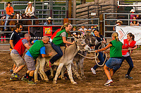 Burro racing, Snowmass Rodeo, Snowmass Village (Aspen), Colorado USA.