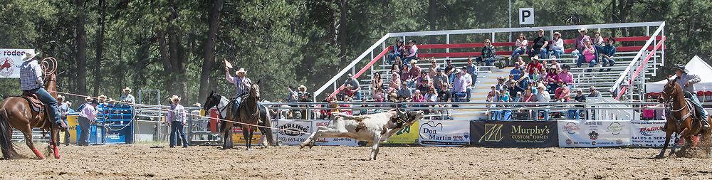 Header Austin Crist and heeler Josh Fillmore make their team roping run in the first performance of the Elizabeth Stampede on Saturday, June 2, 2018.