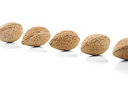 Almond in shell on white background
