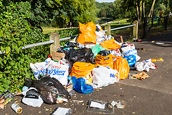 With the hot weather thousands of people have been flocking to London's parks, bringing with them picnics and leaving behind rubbish for the cleaners to collect at Hampstead Heath in London. London, July 25 2019.