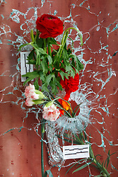 © Licensed to London News Pictures. 16/11/2015. Paris, France. Flowers left on a bullet hole on Le Carillon cafe-bar's window in Paris, France following the Paris terror attacks on Monday, 16 November 2015. Photo credit: Tolga Akmen/LNP
