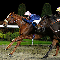 Head Of Steam and Graham Lee winning the 5.20 race