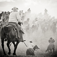 cowboys running horse herd to rodeo in montana