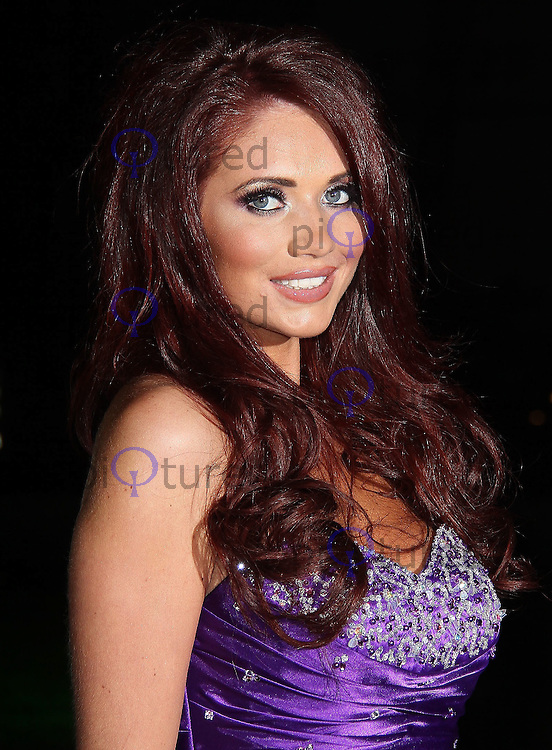 LONDON - DECEMBER 19:  Amy Childs attends the The Sun Military Awards 'The Millies' at the Imperial War Museum, London, UK on December 19, 2011. (Photo by Richard Goldschmidt)