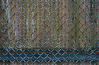Chainlink fence and wooden fence detail.