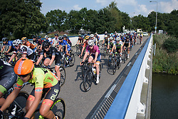 Anna van der Breggen in the bunch at Boels Rental Ladies Tour Stage 4 a 121.4 km road race from Gennep to Weert, Netherlands on September 1, 2017. (Photo by Sean Robinson/Velofocus)