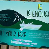 current Dunedin limit is 30 blue cod (60 fillets )