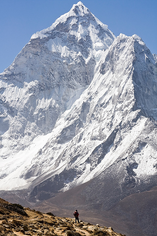 A trekker is dwarfed by the massive North Face of Ama Dablam (6848m), as seen from above Dingboche along the trail to Everest, Khumbu region, Sagarmatha National Park, Himalaya Mountains, Nepal.