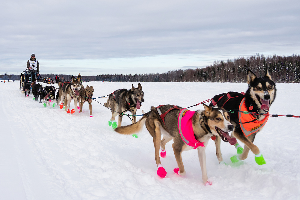 Musher Jeff Deeter after the restart in Willow of the 47th Iditarod Trail Sled Dog Race in Southcentral Alaska.  Afternoon. Winter.