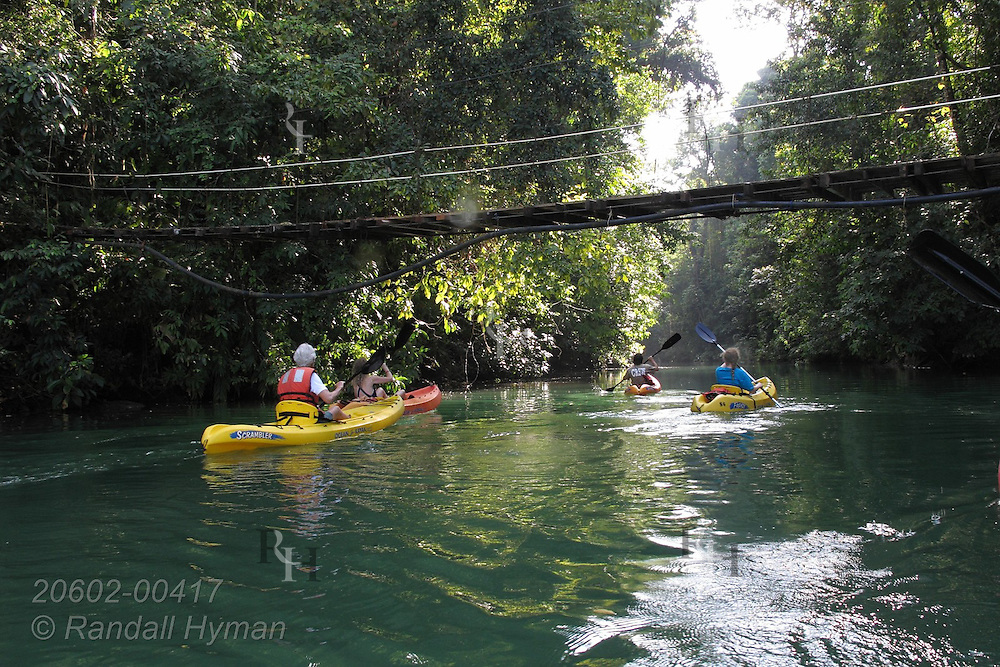 Ecotourists paddle their kayaks up Rio Agujitas river to explore rainforest and riparian habitat bordering Corcovado National Park on the Osa Peninsula; Drake Bay, Costa Rica.