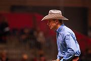 Jeffrey Touroute-Thomas on Whiz For Ever during the Equestrian NRHA European Derby Open Finals Equita Lyon 2017 on November 4, 2017 at Eurexpo Lyon in Chassieu, near Lyon, France - Photo Romain Biard / Isports / ProSportsImages / DPPI