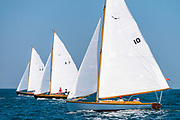 Owl, Alerion Class, sailing at the Opera House Cup regatta.