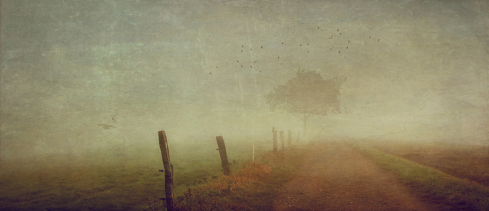 Panorama of a country road on a misty autumn morning - texturized photograph<br /> Prints: https://crated.com/art/113408/someone-else-s-dream-by-dirkwustenhagen