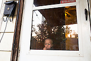From the Hilts' living room, Ryker looks out at 13th Street on the morning of a new day.