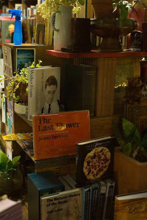 Paul's Book Store, Madison, Wisconsin. Window display.