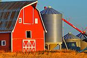 Red barn, grain bins and auger at sunrise<br /> near Moose Jaw<br /> Saskatchewan<br /> Canada