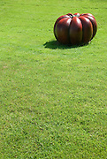 A bright red pumpkin sculpture by Hans Hedberg (1917-2007) sits in stark contrast to the bright green lawn of the Swedish royal palace Solliden, located on the east coast island of Öland, Sweden. Solliden is one of the summer residences of the Swedish Royal family and a large part of the gardens and grounds are open to the public.