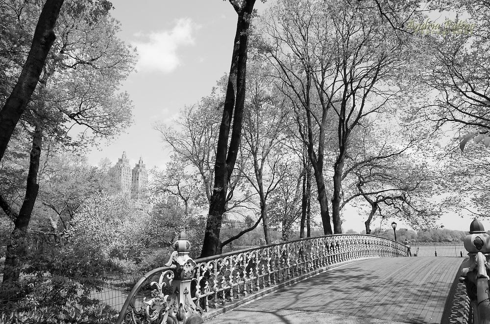Reservoir Bridge, Central Park